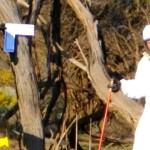 UFO Strike Brings Out Australia's 'Men in White' (Video)