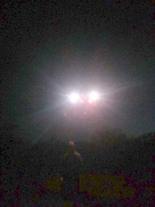 http://pararational.com/wp-content/uploads/2014/05/Killerfishfinger-UFO1-photograph11.jpg